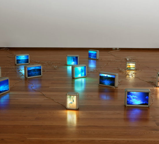 Whatever, wherever - 2000 - installation